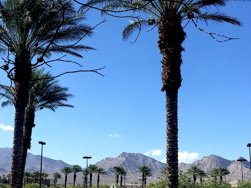 Summerlin Red Rock Mountains