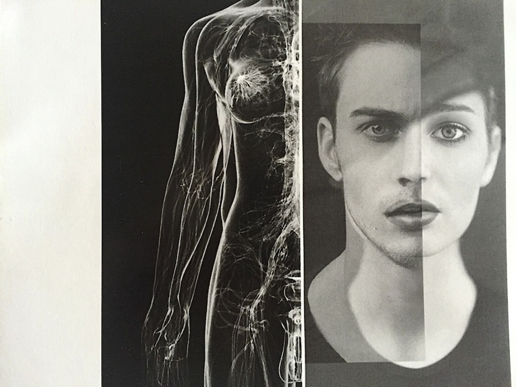Liliana Timis, Genderless, moodboard