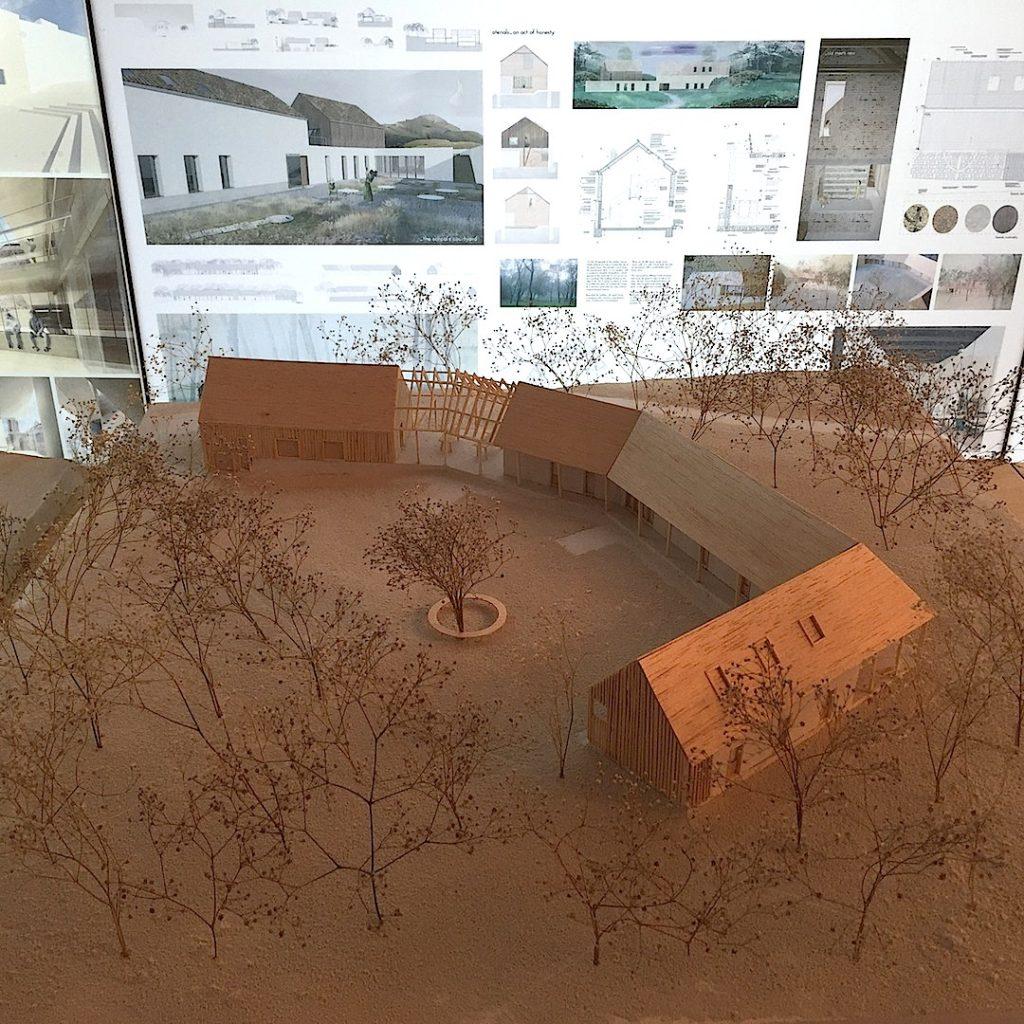 scoala-de-privit-acasa-un-centru-creativ-pentru-revitalizarea-satului-sona