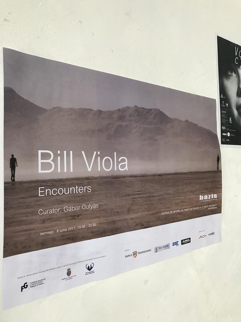 Bill Viola, Centrul de interes