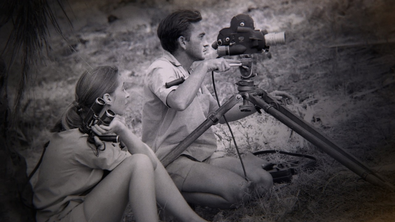 Gombe, Tanzania - Jane Goodall watches as Hugo van Lawick operates a film camera. (Jane Goodall Institute)