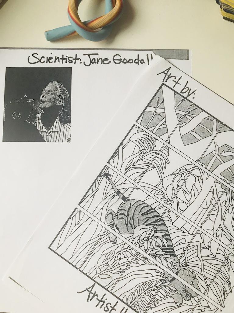 tema lui Avi de la gradinita, cu Jane Goodall