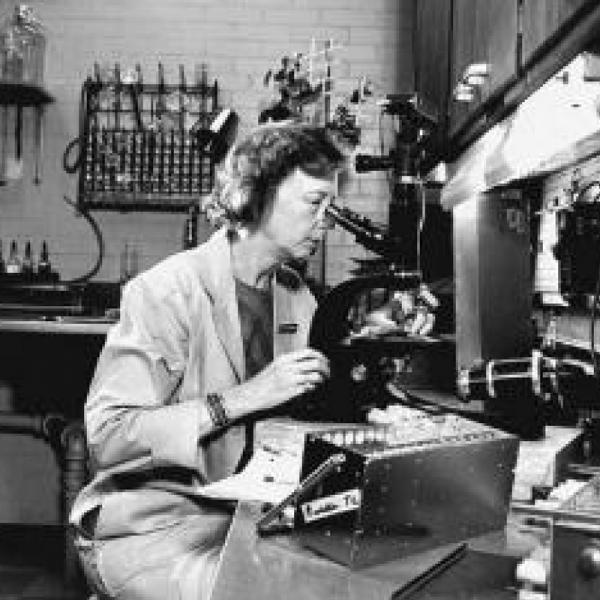 Dr. Dorothy Horstmann