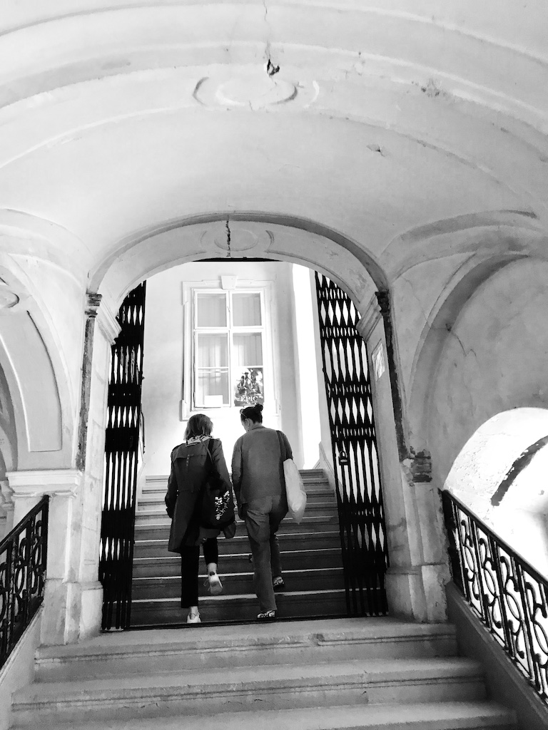 Cristina Bazavan si Oana Vasiliu, Muzeul de Arta Cluj Napoca