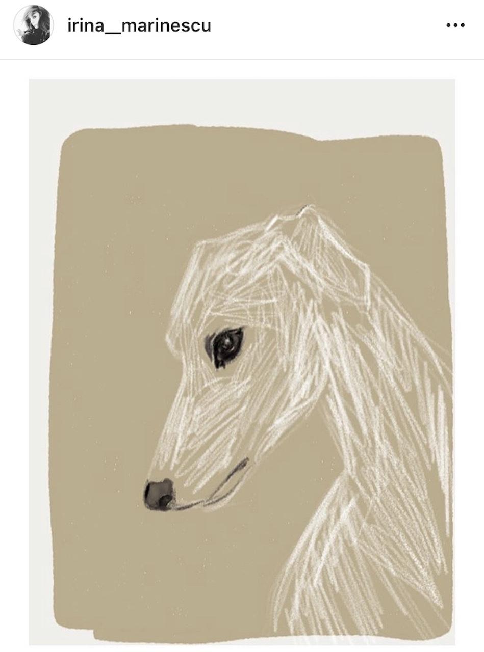 sketch Irina Marinescu