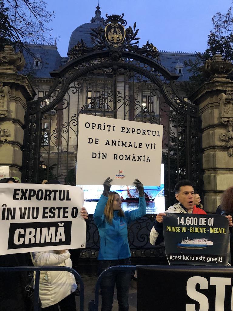 Protestul din 2 decembrie 2019, dupa tragedia de la Midia
